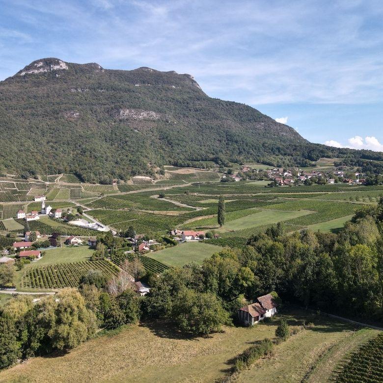 chemin-saint-jacques-jongieux